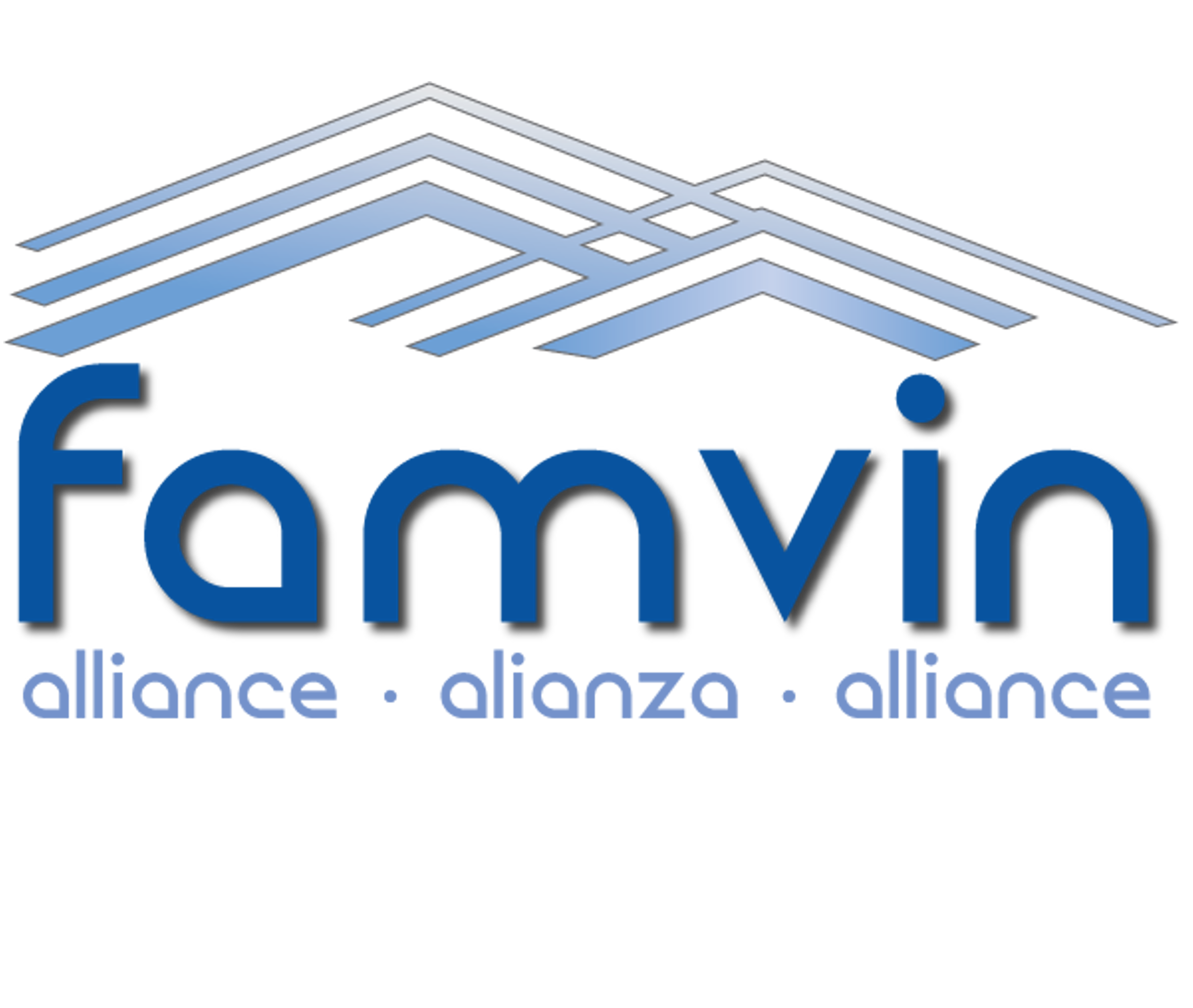 Famvin Homeless Alliance
